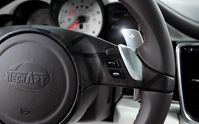 TECHART_paddle_shifters.jpg